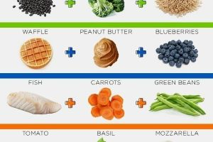 18 Kitchen Cheat Sheets You Absolutely Need In Your Kitchen ASAP