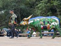 Awesome Buffalo body painting in china