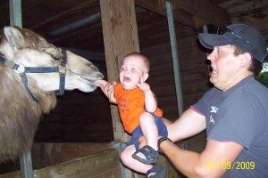 These Might be The Most Awkward Dads You`ll Ever Meet.. Too Funny!