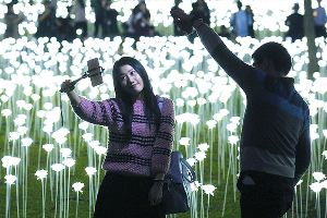 Thousands Of Glowing Roses Light Up Hong Kong For Valentines Day