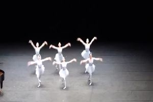 A Funny Unusual Ballet. It`s a perfectionist`s hell!