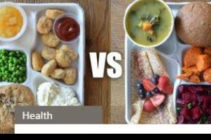 What school lunches look like around the world. Sorry The U.S. but your school lunch looks nasty