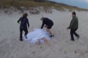 Romantic Wedding Photo shoot with Horse Went Wrong When The Animal Became Wild.