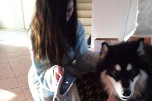 Girl`s Shoes Got Ruined By Dog, Her Boyfriend Repaired Them In The Most EPIC Way Possible (17 pics)