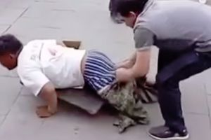 Beggar in Beijing gets exposed as a fraud when a random passerby pulls the beggar`s shorts off and shows that he has legs after all!