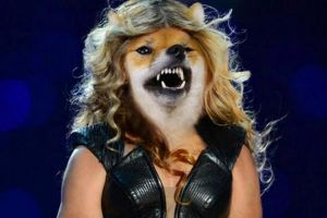 Woman swaps her dog`s face with celebrities... and it`s amazing