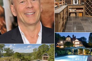 Photos of Bruce Willis`s New Luxury Mansion Will Make You Drools (19 pic)