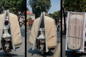 Crazy Loads A Simple Bike Can Carry! (25 pics)