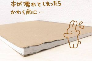 Cool Japanese Life Hack To Fix Your Book That Got All Wet (4 pics)