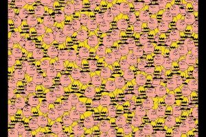 See If You Can Spot The Hidden Pikachu In This Picture (2 pics)