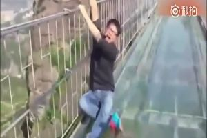 Frightened Tourists Barely Cope With Their Fear Of Heights On The Glass Bridge In China