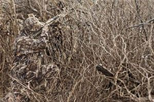 Look at these Soldiers Camouflaging! (10 pics)