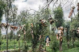 Mexico's haunted Island of Dolls: Thousands of toys to stop tormented Ghost screams of girl that drowned there