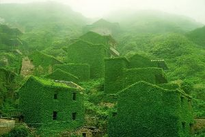 This Entire Chinese Village Has Been Swallowed Up By Nature! (8 pics)