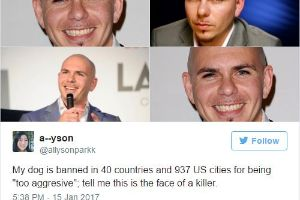 26 of The Funniest Tweets You'll See All Week