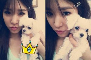 Kpop stars who are madly, deeply, truly in love with their pets (23 pics)