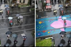Beautiful Street Murals Appear On Roads Only When It Rains