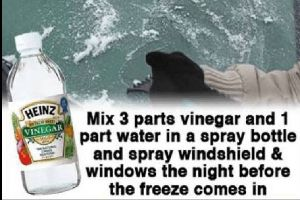 Useful Tricks and Awesome Tips for Surviving Winter (15 pics)