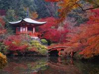 Beautiful pictures of autumn fall