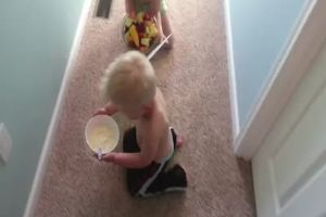 Mother`s Day Breakfast In Bed Gone Totally Wrong