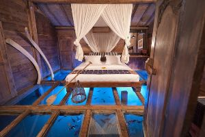 This Room`s Glass Floor Showcases Such Amazing Underwater Wonders